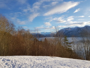 View over Langfjorden at a geocache. Nice view.
