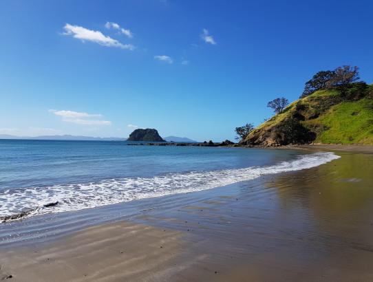 New Zealand - Day 12 - Coromandel town and Fletcher bay