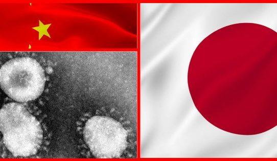 Big changes for my holidays - bonus tour to Japan